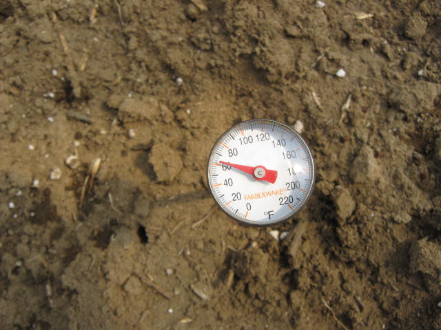 I'm using a kitchen thermometer to measure the soil temperature in the hoop.house