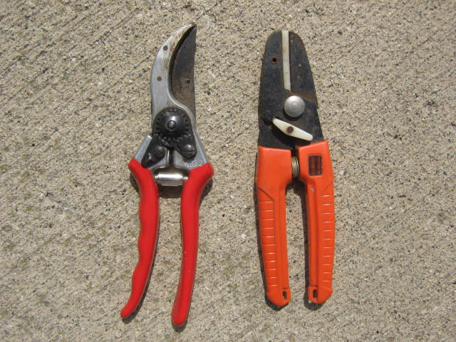 By-pass type pruners (left) make the cleanest cuts. Anvil type pruners are cheaper to buy but don't cut as well.