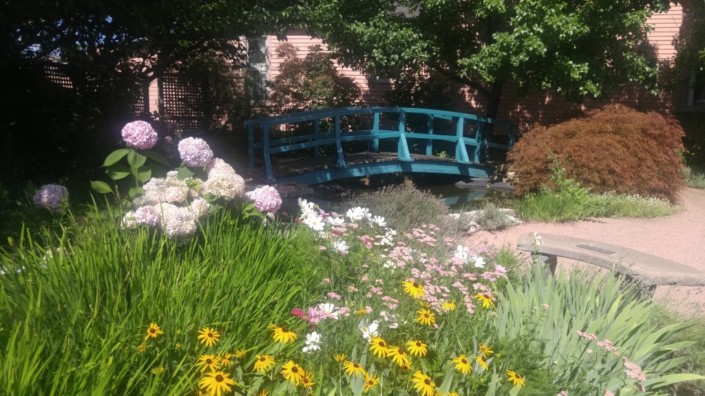 The gardeners have install a bridge reminiscent of the one in Monet famous painting.