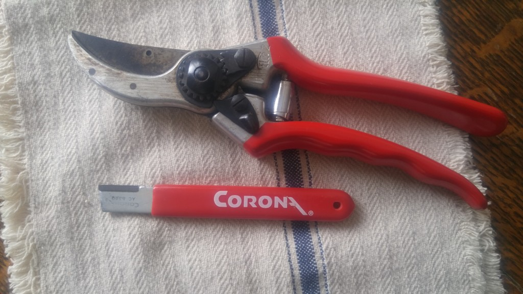 One of my Felco pruners and Corona sharpening tool.